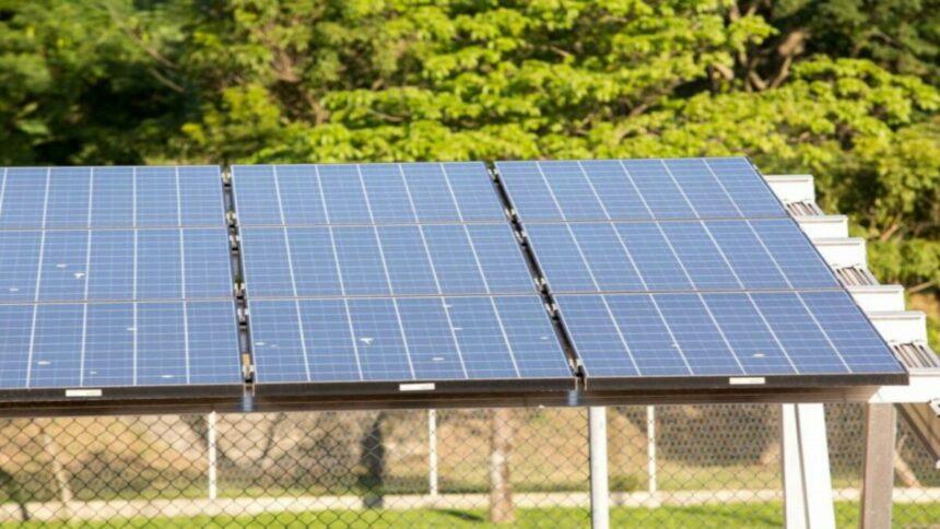 Com o Complexo Solar Alex, a Elera Renováveis, antiga Brookfield, irá fornecer energia solar para quase 1 milhão de residências no Ceará