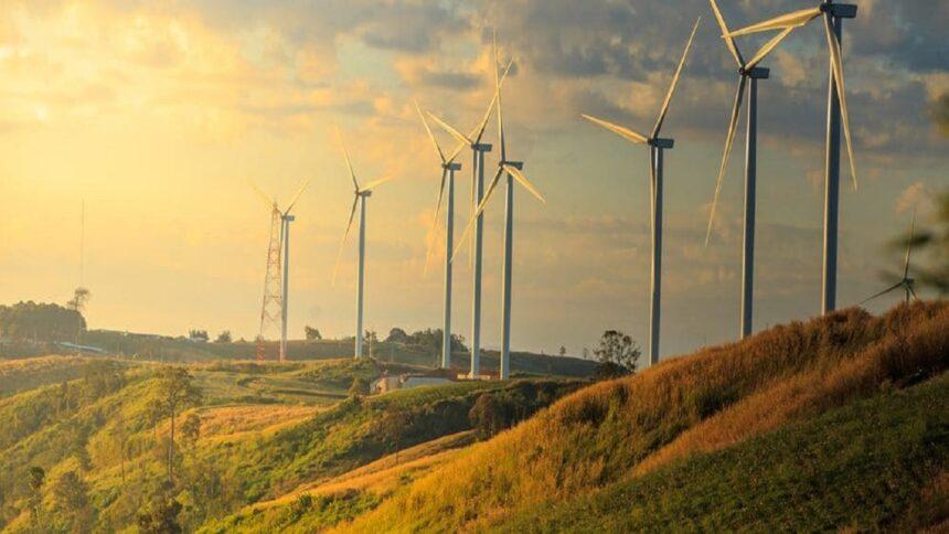 energia eólica - Mizuno -Olympikus - mercado - fabricante