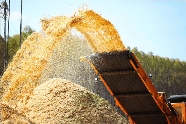 Energia de biomassa - MME - Goiás - bioeletricidade