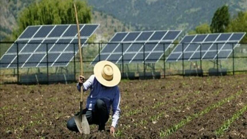 Com energia elétrica nas alturas devido à crise hídrica, agronegócio busca amparo na energia solar e nos painéis fotovoltaicos, para manter sua produção ativa