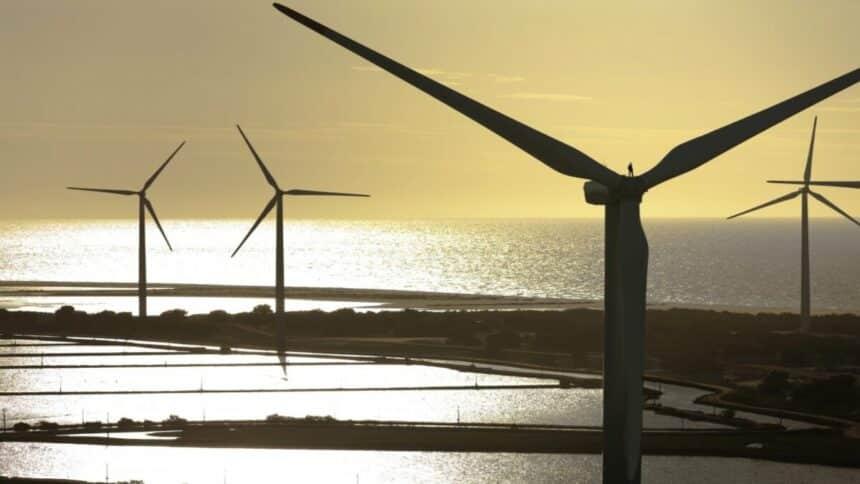 Aneel permite que algumas usinas renováveis iniciem as suas operações e parques eólicos do Nordeste, entrem em fase de teste